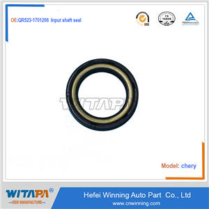 Input shaft seal  QR523-1701206  Chery tiger