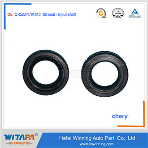 Oil seal - input shaft  QR523-1701413   Chery tiger